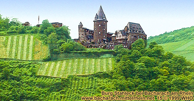 Castle Stahleck near Bacharach on the Rhine River